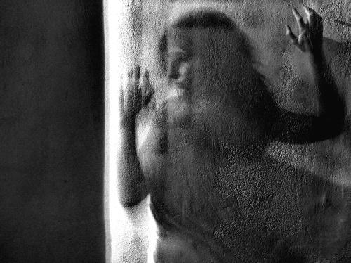 Assorbita - © Paola Tornambè