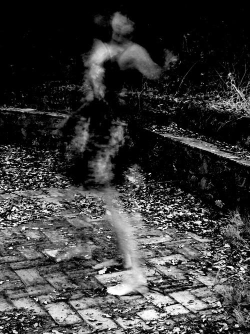 Spirito selvaggio - © Paola Tornambè