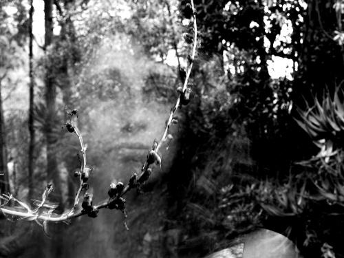 Anima del luogo - © Paola Tornambè