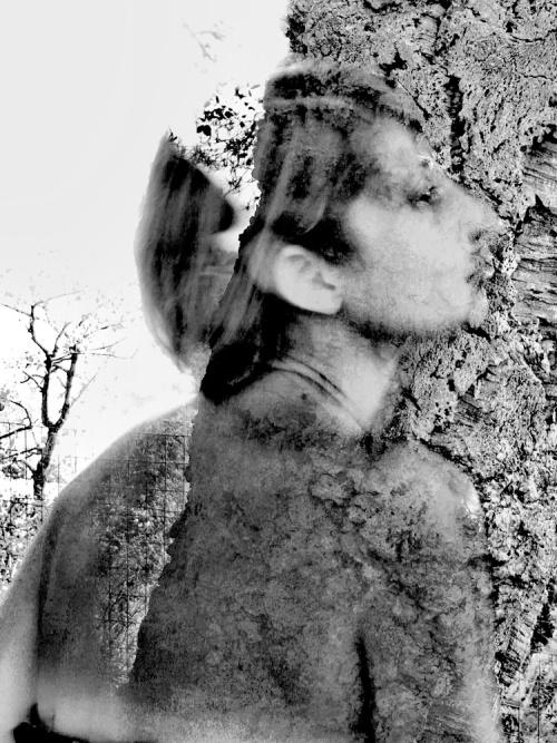 Frattura - © Paola Tornambè