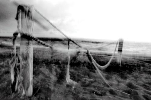 Legami - © Paola Tornambè