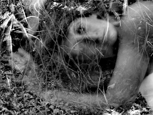 L'occhio della natura - © Paola Tornambè