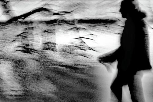 Inquieto e mai uguale anch'esso - © Paola Tornambè