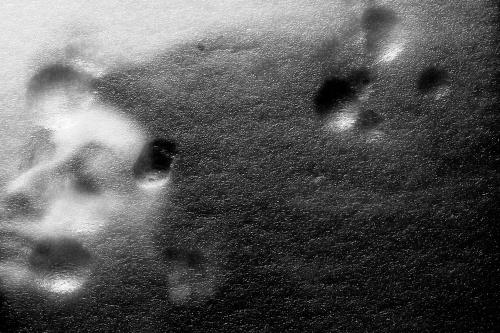 Suolo lunare - © Paola Tornambè